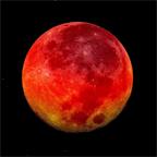 Four Blood Moons prophesy the End Days, says Pastor Mark Biltz